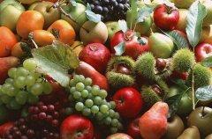 100种水果名字大全